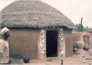hawa_van_andel_ghana